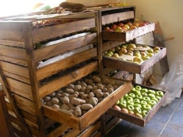 Cellaring for food preservation