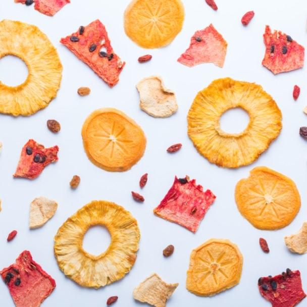 best fruit dryer