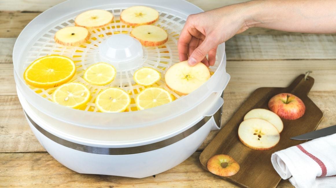 the best fruit dryer