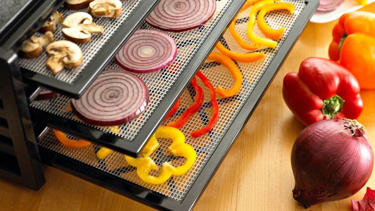 best excalibur food dehydrator review