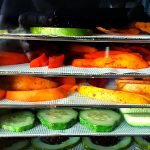 Round Vs Square Dehydrator – Which Is The Best Food Dehydrator?