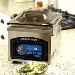VacMaster VP210 Chamber Vacuum Sealer Best Review